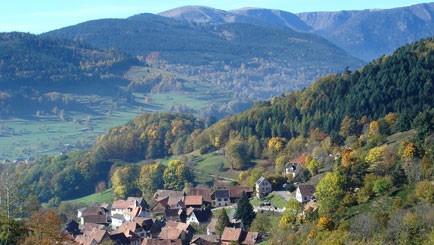 Elsass - Vogesen - Die grüne Lunge Frankreichs - Wandern, Frankreich,