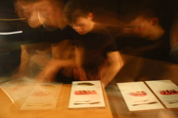 Netil House: Blanch & Shock the Waldorf project... dance+food