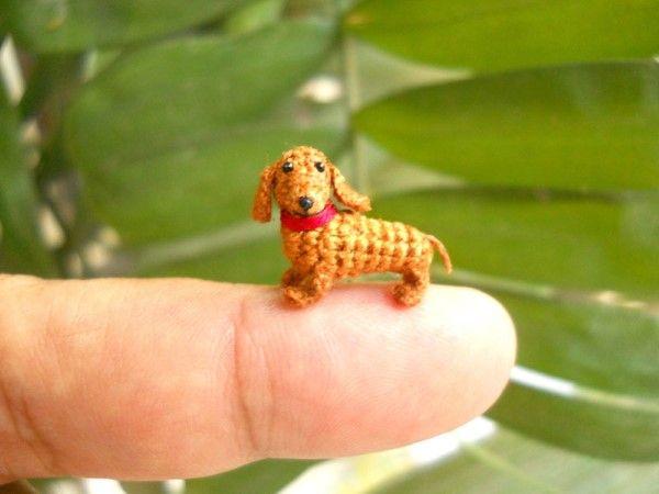 Die 38 besten Bilder zu hackovane zvieratka auf Pinterest ...