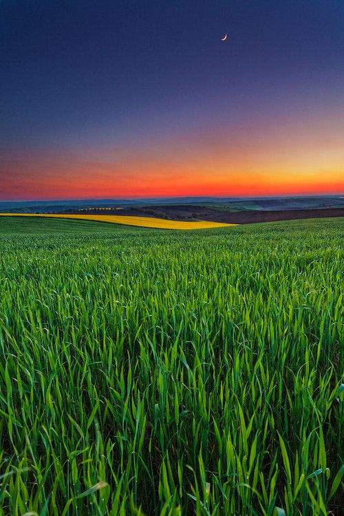 Vivid color - Sunset field in Bulgaria