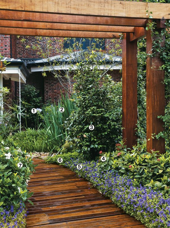 Agapanto (1), íris (2), que floresce na primavera, e camélia (3) ladeiam o deque, que se transforma em ponte. Envolvendo o portal de madeira, crescem ixora-rosa (4), as forrações de torênia (5) e amendoim (6), e, do outro lado, a gardênia (7).