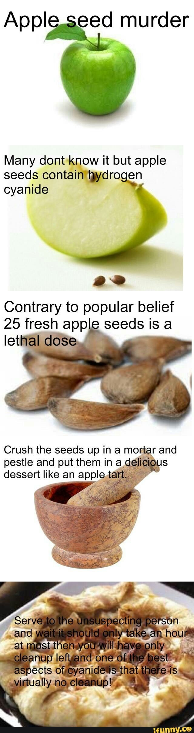 It's probably more trouble than it's worth, but still interesting. I'd suggest cherry pits though, they carry more cyanide and it's easier to buy a bunch of them.