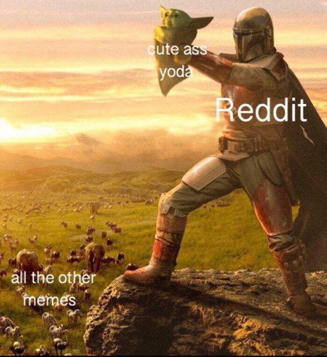 33 Baby Yoda Memes Because He S The Best Thing Since Porgs Yoda Meme Yoda Memes