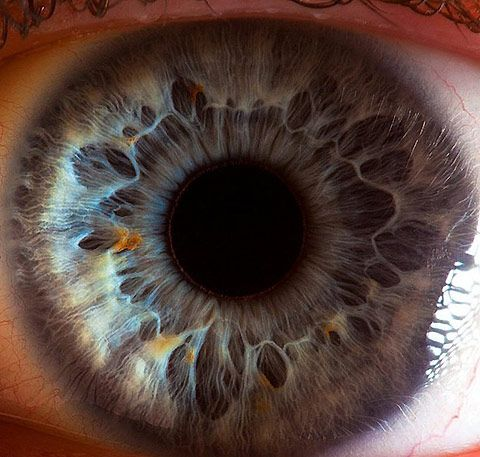 """By Suren Manvelyan, from the series of close-ups called """"Your Beautiful Eyes.  macro, human eye, blue, patterns, nature, photography, circle, sphere, orb, pupil, iris,"""