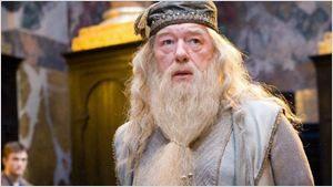 'Animales fantásticos y dónde encontrarlos 2': 10 actores que podrían interpretar a la versión joven de Albus Dumbledore
