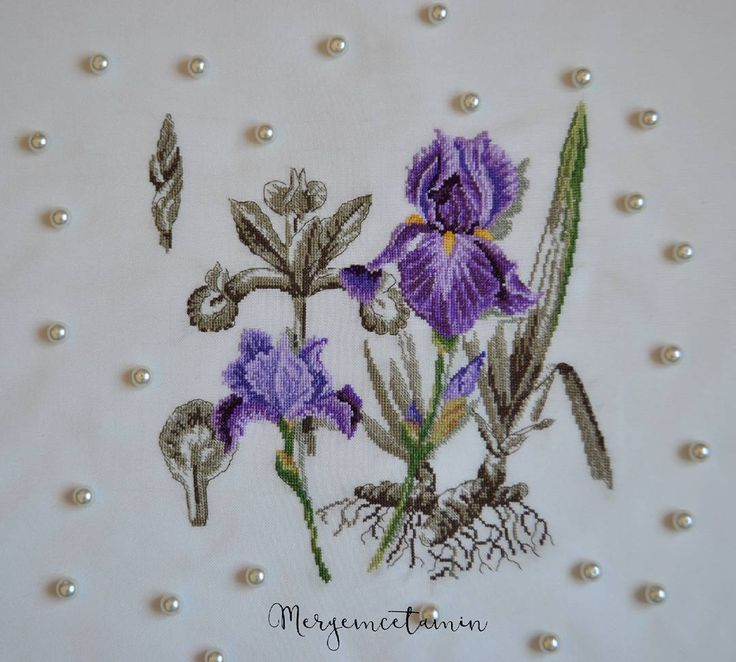 """Veronique Enginger - Etudes de Botanique 17 Beğenme, 5 Yorum - Instagram'da @meryemcetamin: """"Beni çok uğraştıran ama sonucu harika olan canım kanaviçem 😊💕Mor rengi her zaman çok sevmişimdir.…"""""""