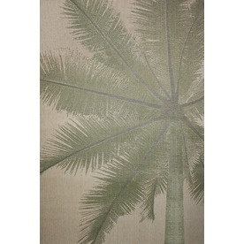 Coastal Natural And Green Rectangular Indoor And Outdoor Machine Made Area  Rug (Common: