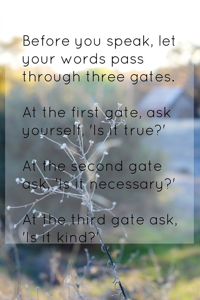 "Think before you speak- ""Before you speak, let your words pass through three gates. At the first gate, ask yourself, 'Is it true?' At the second gate ask, 'Is it necessary?' At the third gate ask, 'Is it kind?'"" A Sufi Quote"