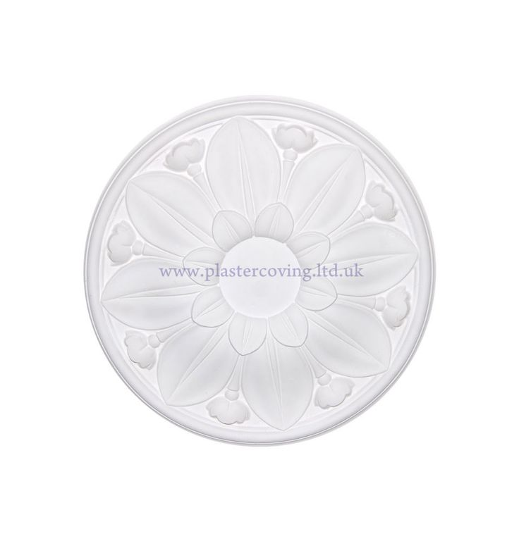 Small Leaf and Tulip Plaster Ceiling Rose