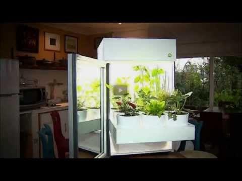 Plantário - Tenha uma horta dentro de sua casa e colha o que há de melhor.