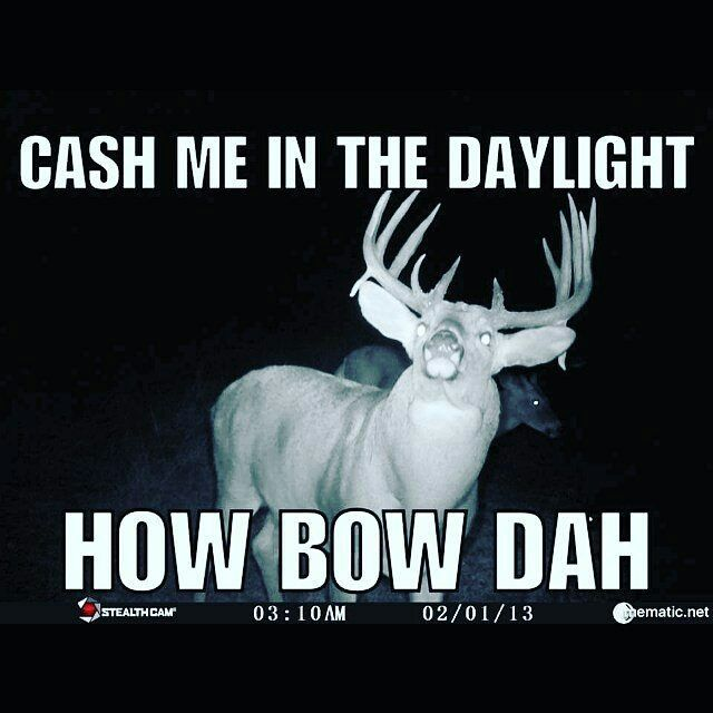 Haaaa!!!! from @aaronawatson Ain't that the truth! #hunting #whitetail #howbowdah #memes ...
