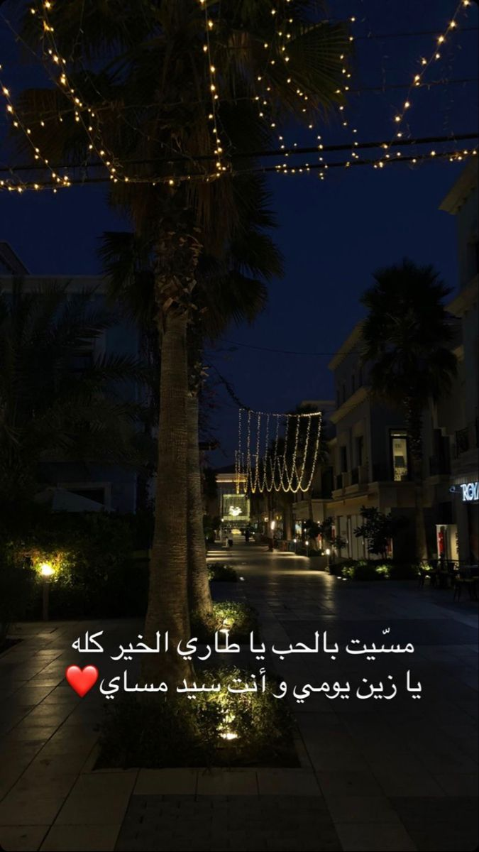 Pin By Lamees Baksh On قصـايد حـب ضيم In 2021 Holiday Decor Challenges Arabic Quotes