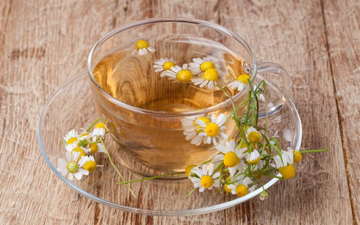 Download wallpapers tea with chamomile, flower tea, drinks, glass cup