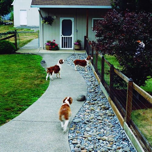 river rock to deter digging under fence plus other dog friendly ideas - Garden Ideas For Dogs