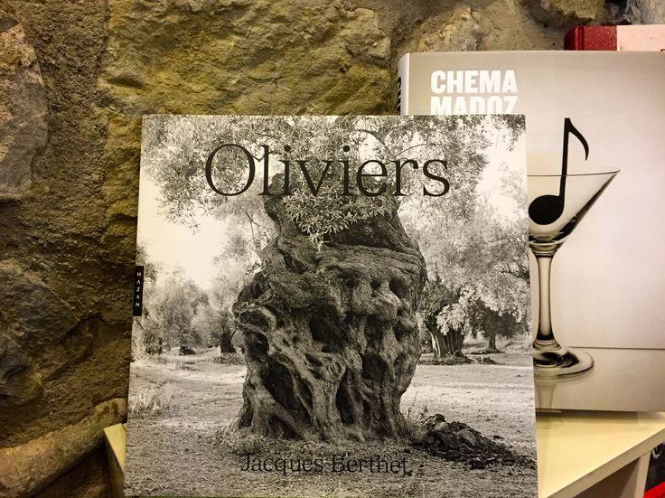 Oliviers, Jacques Berthet, Editions Hazan