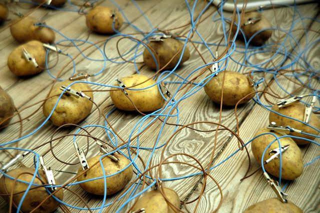 potato battery can light up a room for 40 days. >>> Holy cow, I am so making a potato battery. Best secret santa gift ever!!