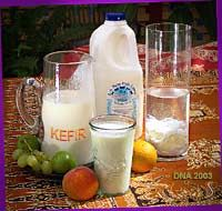 The biggest and most comprehensive site on the web for all things relating to raw-milk kefir, water kefir, and kombucha...everything you could ever want to know, plus recipes.