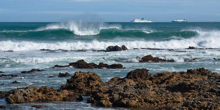 Owhiro Bay, Wellington, Nový Zéland