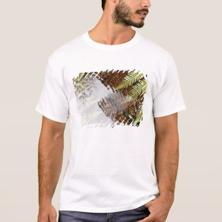 New Zealand fern leaves, South Island, New Zealand T-Shirt - click/tap to personalize and buy