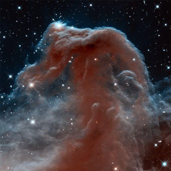 De Paardenkopnevel blijft een juweel. Vooral omdat het object met het blote oog – zelfs door de telescoop – niet te zien is. De Paardenkopnevel bevindt zich op zo'n 1500 lichtjaar van de aarde en maakt deel uit van het Orioncomplex. In dit gebied ontstaan zeer massieve sterren. Dat is op de foto goed te zien. Zo zien we boven het bovenste randje van de nevel twee sterren opdoemen uit hun 'kraamkamer'. Deze foto is gemaakt door de Hubble-ruimtetelescoop. http://www.scientias.nl/