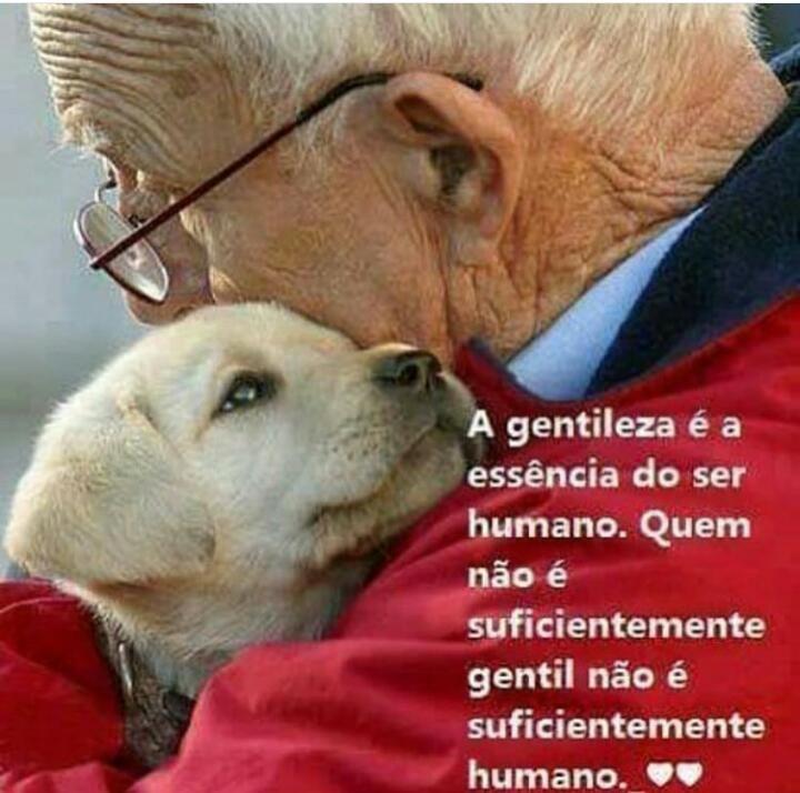 PURA VERDADE! <3 #petmeupet #cachorro #gato #amoanimais #gentileza