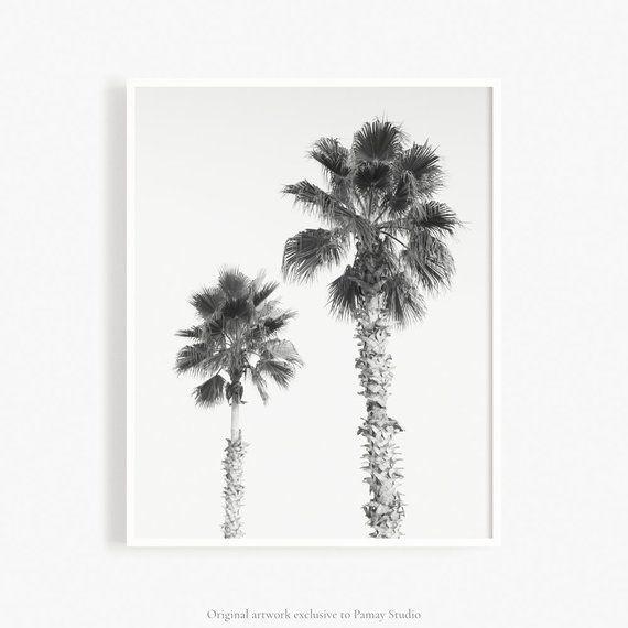 Palm Trees Wall Art Black And White Palm Trees Photograph Minimal Tropical Wall Art Modern Minimalist Decor Palm Tree Artwork Do Artwork Black White Minimalist Decor