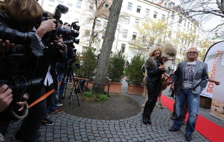 Mehr Infos -> http://www.sonnenklar.tv/promo/reisen-mit-den-geissens.html