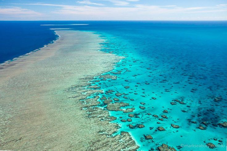 Mark Seabury Photography | Great Barrier Reef, QLD