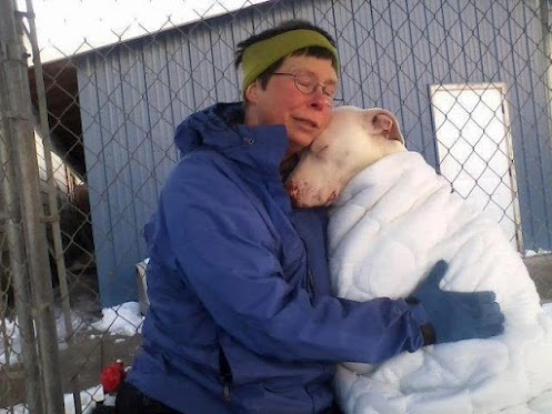 This image speaks volumes: Animal Rescue, Friends, Pet, Pitbull, My Heart, Pit Bull, Shelters Dogs, Help Hands, Speaking Volume