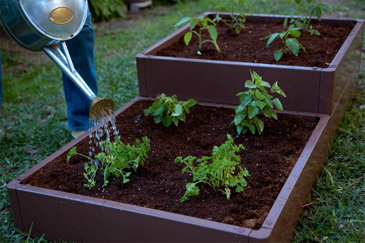 This spring create a raised bed  garden. #DIY #Plants