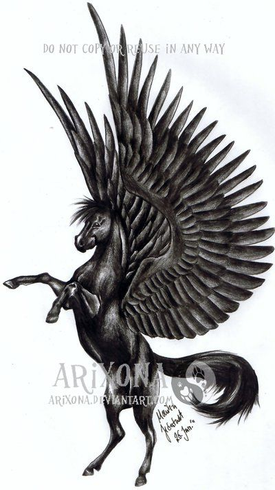 black pegasus tattoo | Black Pegasus Drawing Black pegasus by arixona