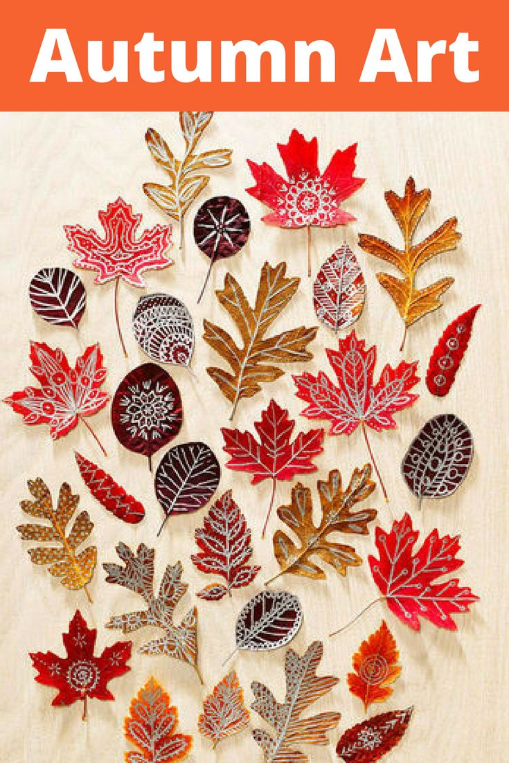 the 25 best fall leaves drawing ideas on pinterest