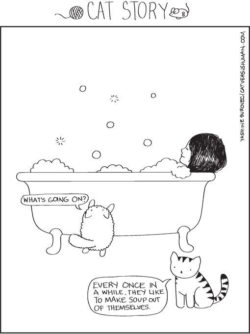 What cats think of human bath times...: 11 Weird, Human Soups, Cat Habits, Weird Cat, Cat Comic, Cat Stories, Bubbles Bath, Cat Ladies, Bath Time