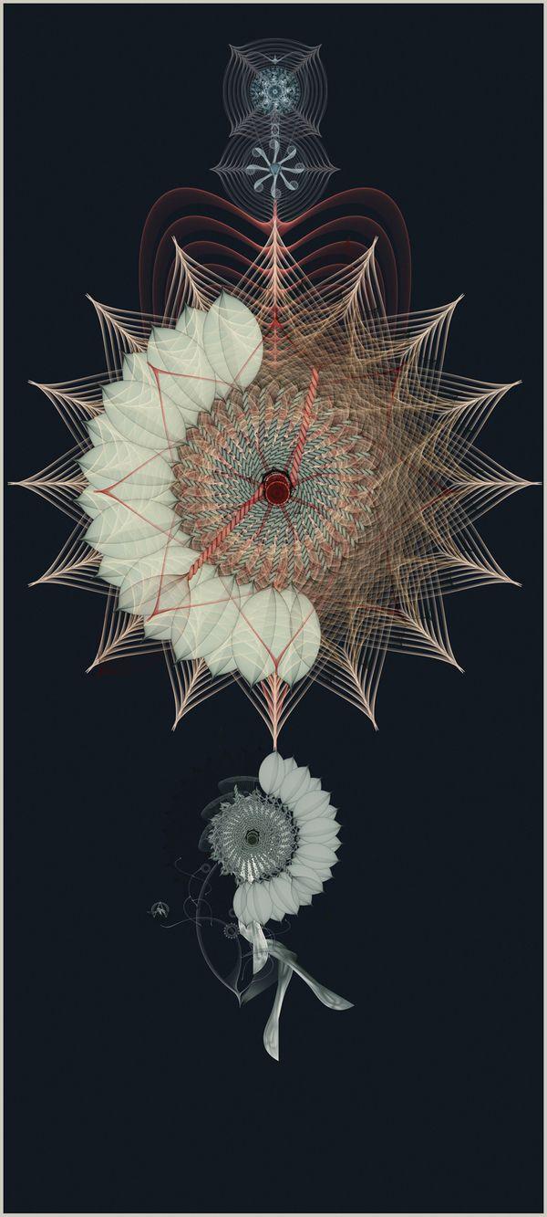 Un enlace hacia Clover, by Cristian Boian