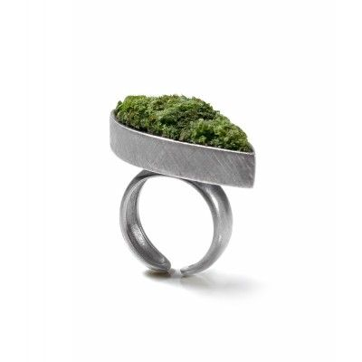A ring with moss -  A silver boat filled with real, natural moss.  High moist level required– the ring ought to be watered! :)