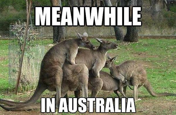 Omg hahahhahaha
