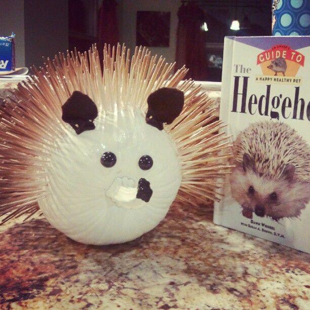 hedgehog pumpkin for my daughter's book character pumpkin challenge.