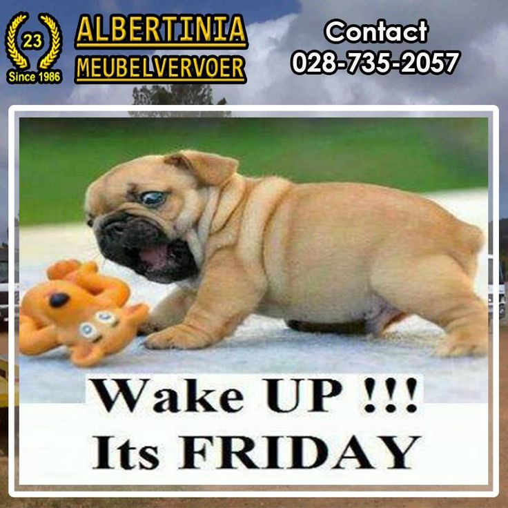 As the weeks fly past we have reached Friday again. Albertinia Meubelvervoer wishes everybody a blessed weekend and safe travels. #Friday #albertiniameubelvervoer