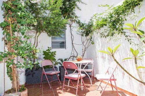 plantas por el patio