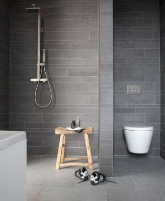Afscheiding douche/ toilet en bad ertegenover; grijs