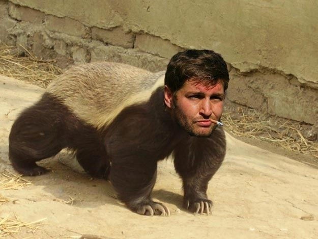 And here's Smoking Jay Cutler's head on the honey badger's body.