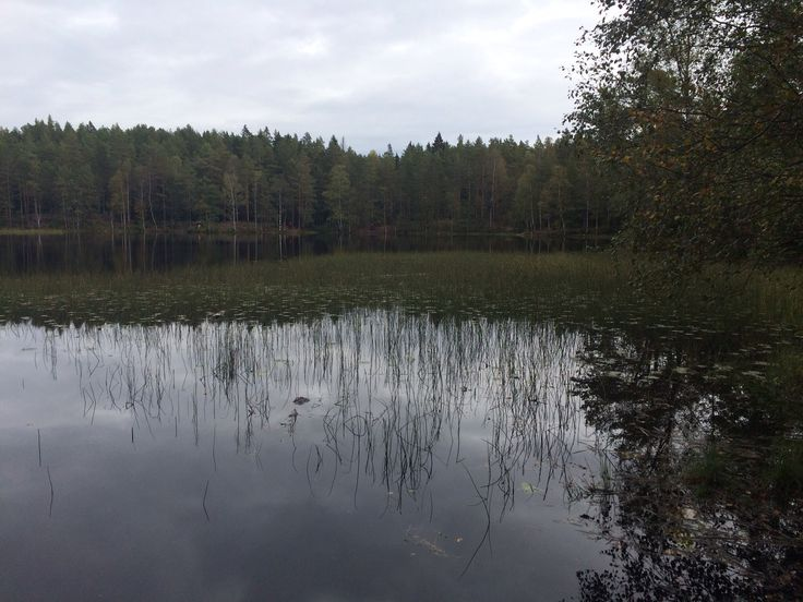 Østmarka
