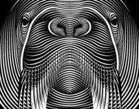 """Popatrz na ten projekt w @Behance: """"Faces"""" https://www.behance.net/gallery/1678426/Faces"""