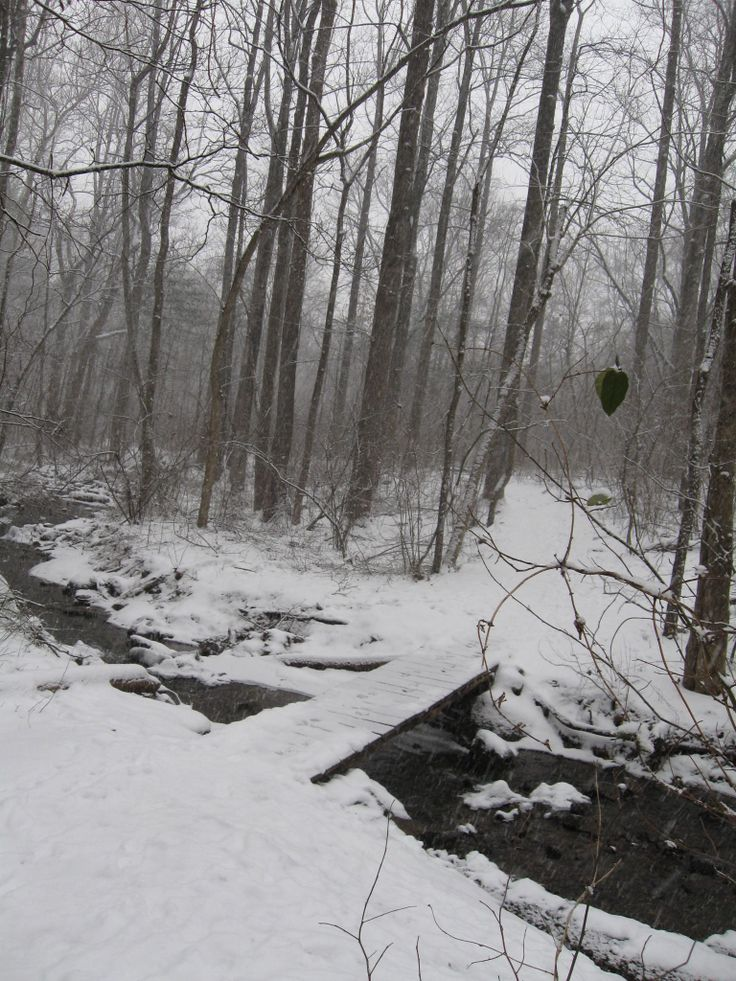 We've already had some snow. Soon the trail will again look like this. Walk carefully.