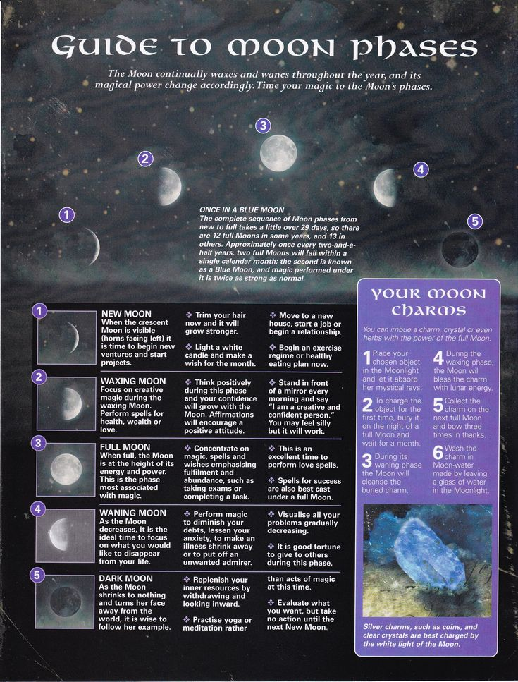 Sweet little Lunar cycle guide and how you can maximize the potential energy of each moon phase for spells, rituals and magic.- Pinned by The Mystic's Emporium on Etsy