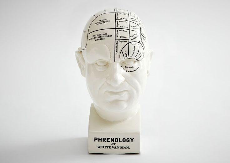 White Van Man Phrenology Head