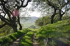 North County Archives - San Diego Hiking Trails - A FREE resource for the best hikes in San Diego