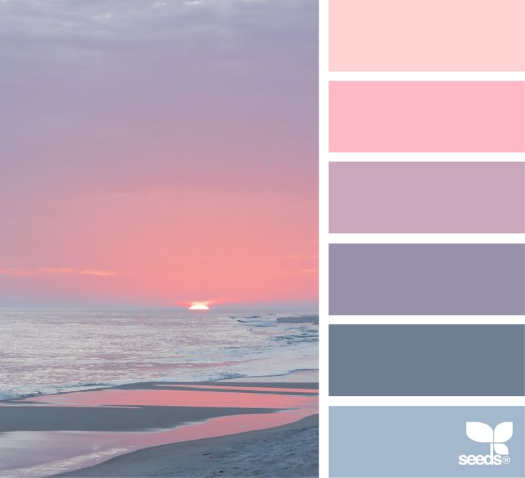 1355 Best Images About Design Seeds Palettes Misc On