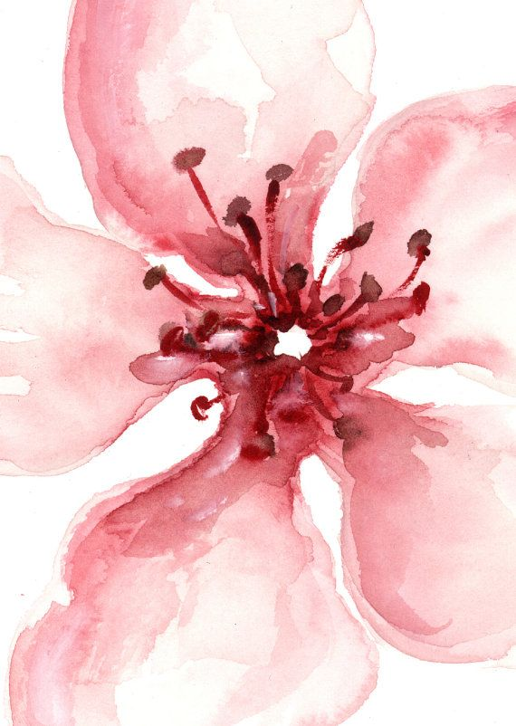 Lámina flor de cerezo rosa cartel Floral por ColorWatercolor