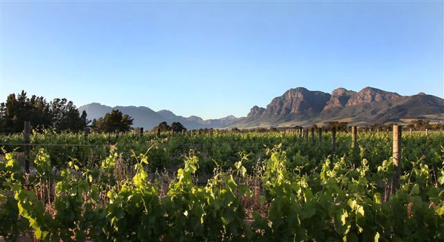 Val de Vie Farm for sale  http://www.valdevie-properties.co.za/component/estateagent/property/78/val-de-vie-estate-wine-farm-for-sale.html